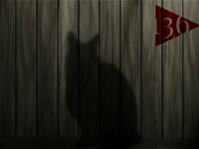 師匠シリーズ54 猫